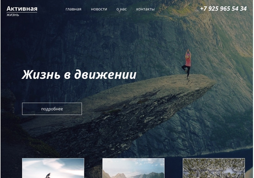 Пример 4 : Сайт Mspexpert.ru