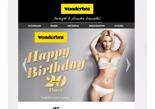 Пример 2 : Промо страница для сайтов