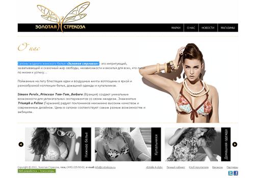 Пример 1 : Сайт сети «Золотая стрекоза»