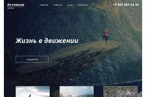Пример 2 : Сайт Mspexpert.ru